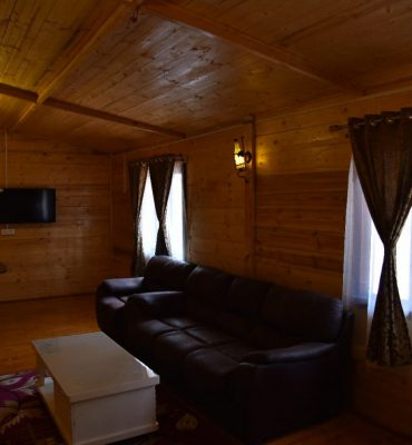 Wooden House Living Room